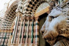 Leone-del-Duomo