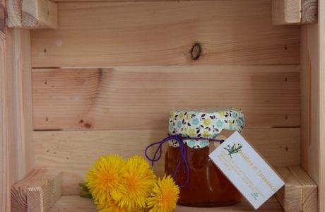 Gelatina di Tarassaco 460x300 Dandelion jelly