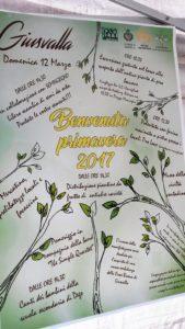Giusvalla 2017