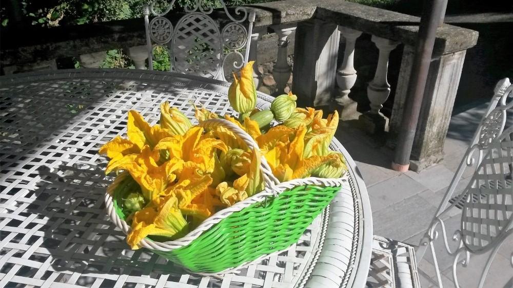 I miei fiori preferiti 1 Sinergie in agricoltura l 8217 orto