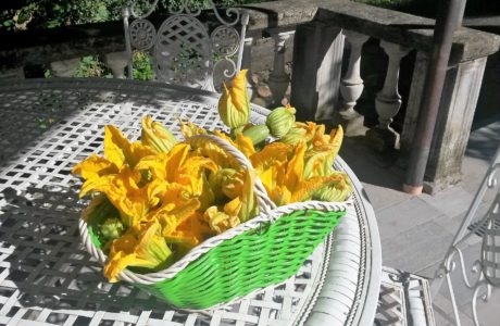 I miei fiori preferiti 460x300 The most beautiful flowers 8230 and tasty ones