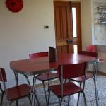 Kitchen Calendula