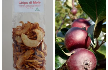 Mele Chips Snack di Mele Fotor Collage 460x300 Snack de Pommes croquantes