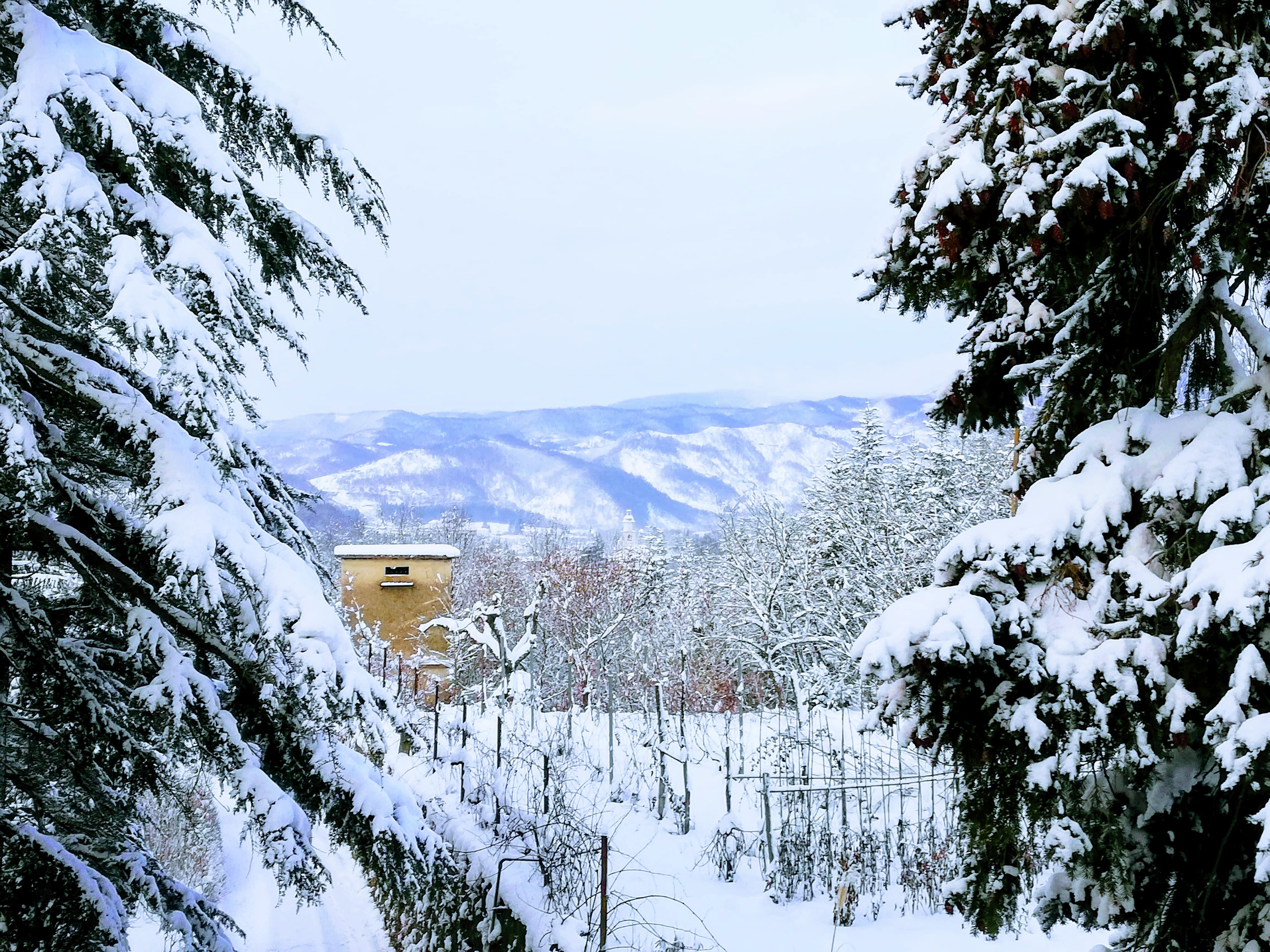 Neve a Spigno Controvento