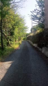 percorso-1