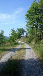 percorso-3