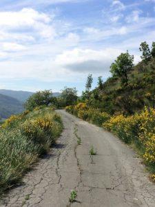 percorso-fra-le-ginestre