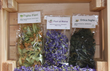 Tisane di Fiori 460x300 The infusions of flowers and leaves