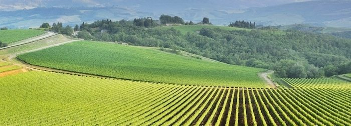 agricoltura 700x253 Evviva i contadini