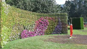 costruzioni di fiori 300x169 Villa Cheti ad Euroflora 2018