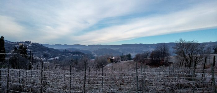 dalla vigna 700x300 Happiness in Winter Time in a Few Moves