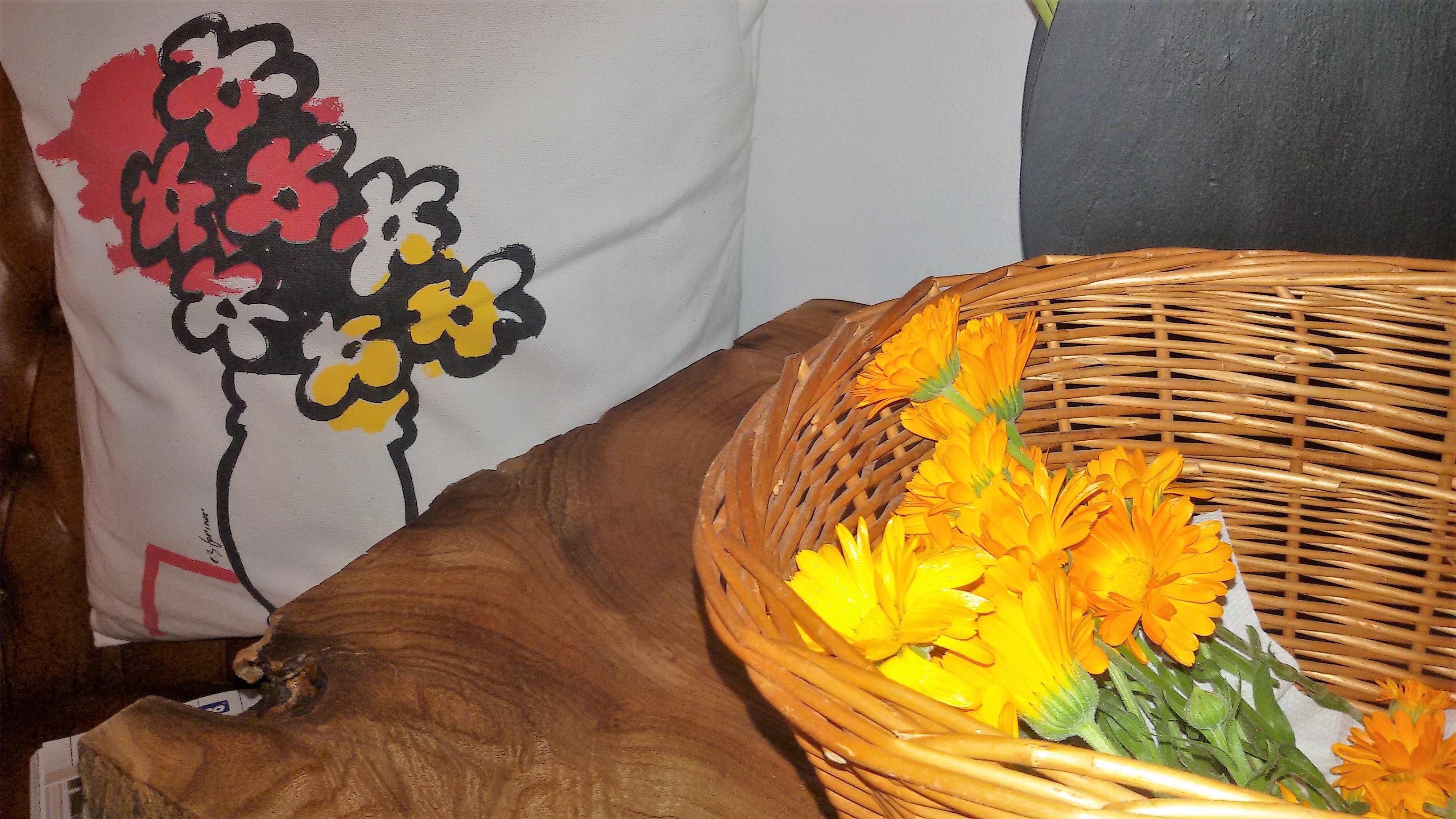 fiori finti fiori veri I poteri 8220 magici 8221 del fiore di Calendula 8230 solo leggende