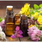 fiori per olii