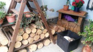 legna e gatti