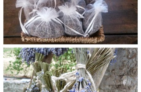 mazzetti lavanda Fotor Collage 460x300 Lavender 8211 perfumers