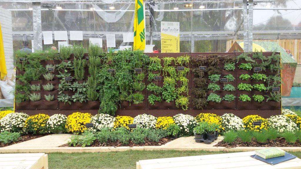 piantefiori erbe aromatiche 1024x576 Contadini in citt 8230