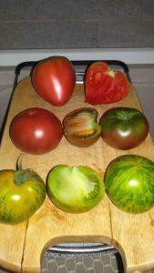 tris di pomodori 169x300 Evviva la salsa di pomodoro 8230 verde